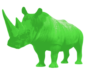Green Rhino Staffing