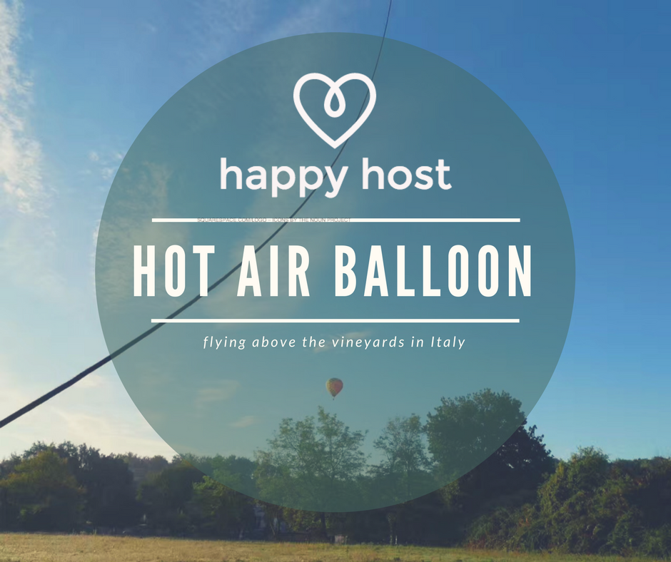 Hot air bollon1 (1).png