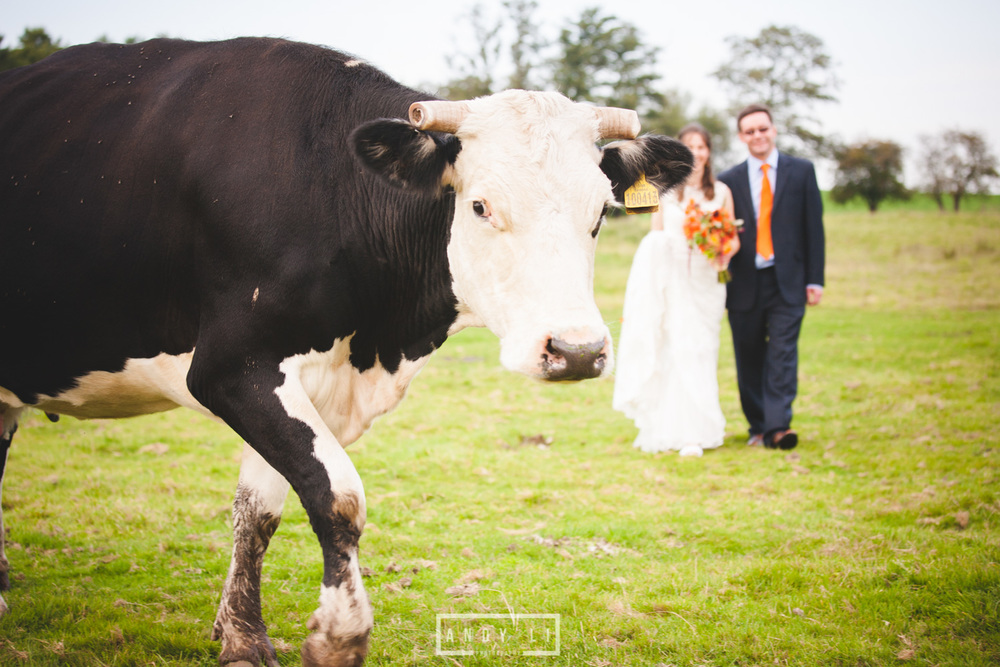 Fordhall Farm Wedding Photographer - 02.jpg