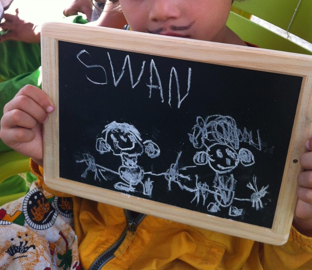 Swan 3 ans