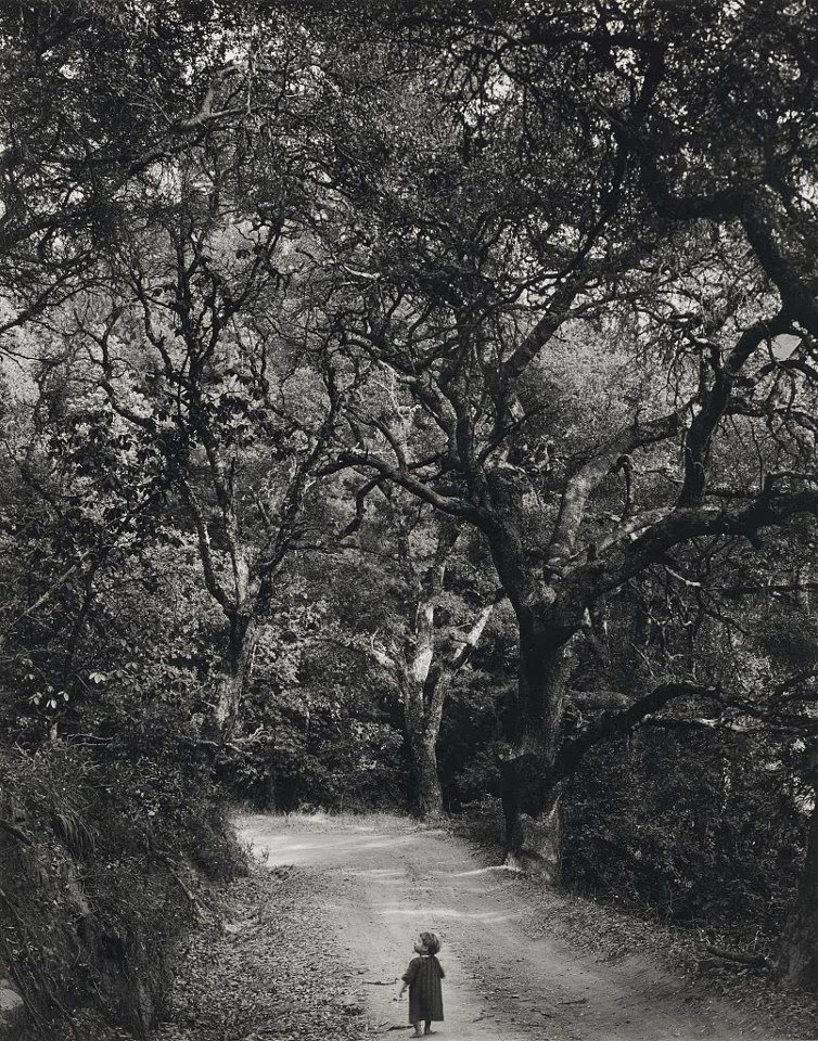 "crédit photo : Wynn Bullock ""Child on forest road"" (1958)"