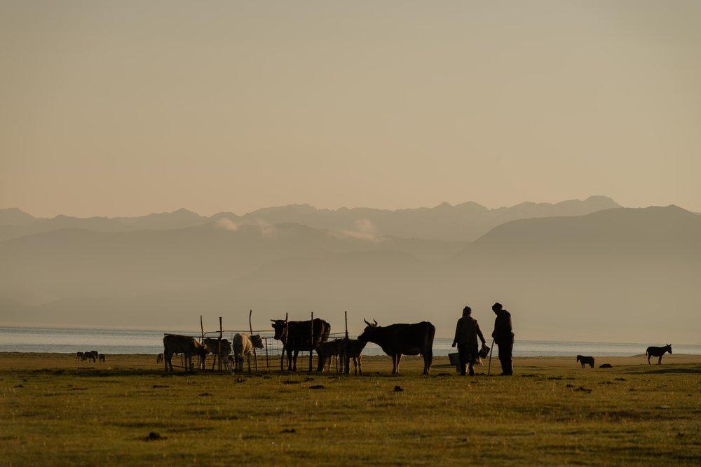 nomads-6.jpg
