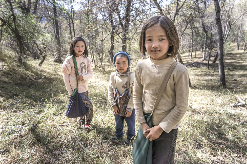 walnut-pickers-arslanbob-kyrgyzstan-jo-kearney-photography-video-photographer-cheltenham.jpg