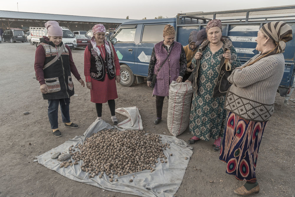 walnuts-kyrgyzstan-jo-kearney-video-photography-photographer-cheltenham.jpg