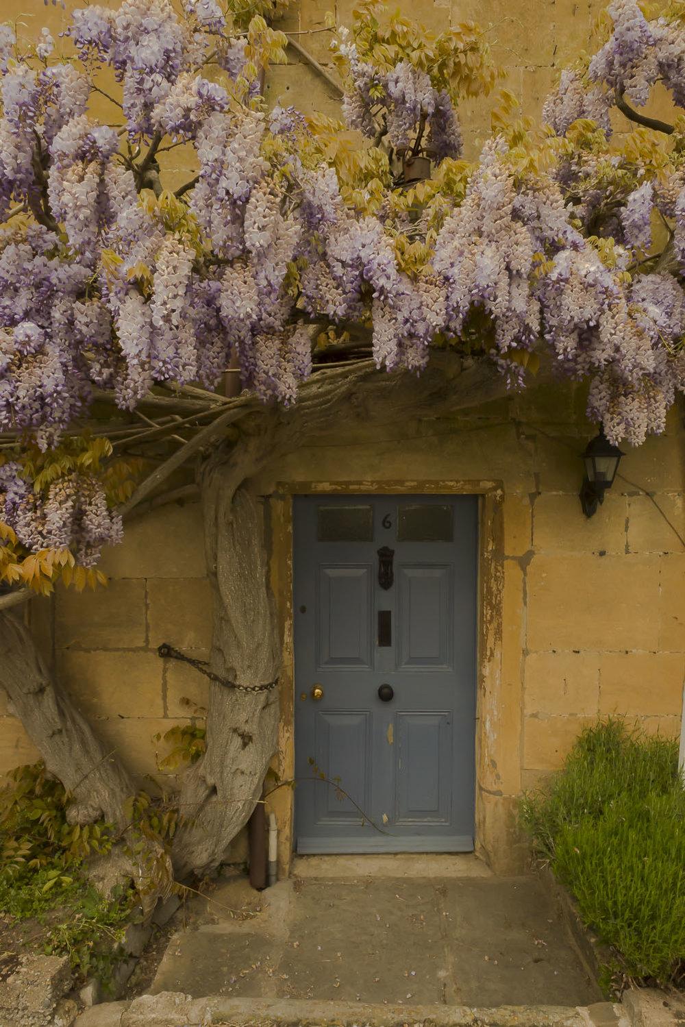 cottage-wisteria-Broadway-Gloucestershire-Jo-Kearney-photos-landscape-photography-video-landscapes.jpg