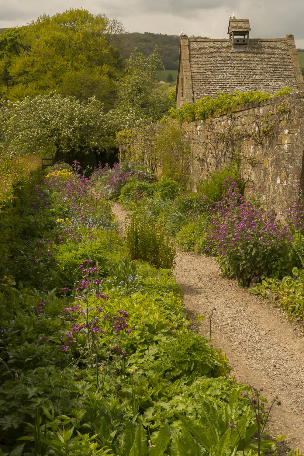 garden-Snowshill-flowers-Gloucestershire-Jo-Kearney-photos-landscape-photography-video-landscapes.jpg