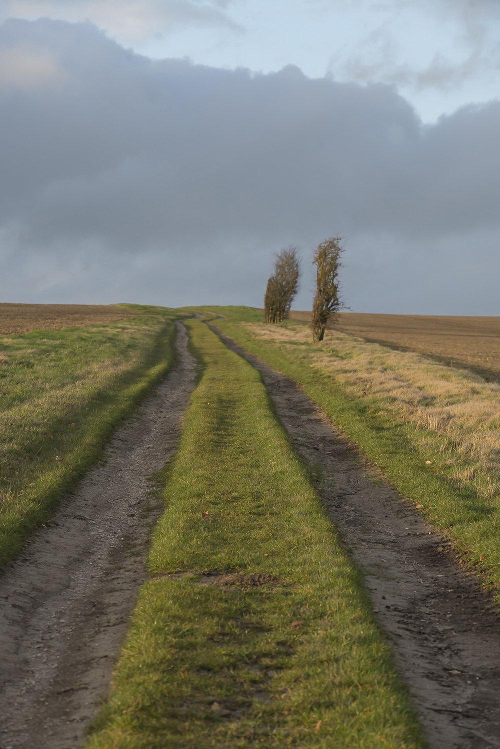Oxfordshire-Ridgeway-winter-Jo-Kearney-photos-landscape-photography-video-landscapes.jpg
