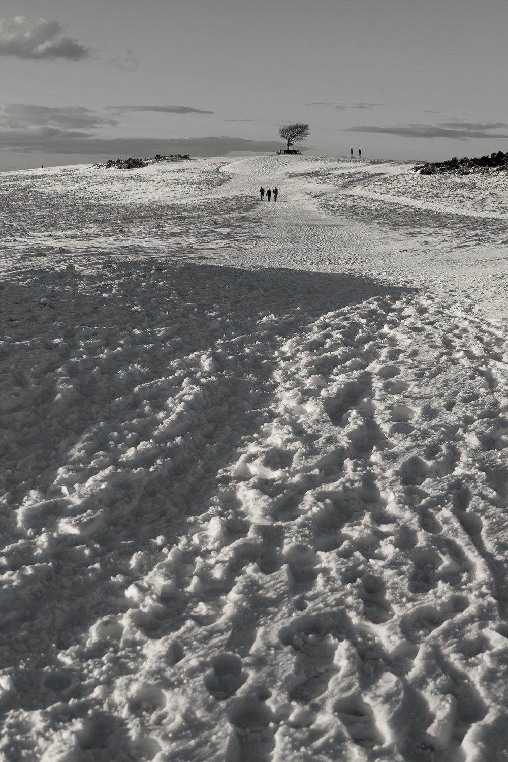 winter-snow-Cleeve-Hill-portrait-Gloucestershire-Jo-Kearney-photos-landscape-photography-video-landscapes.jpg