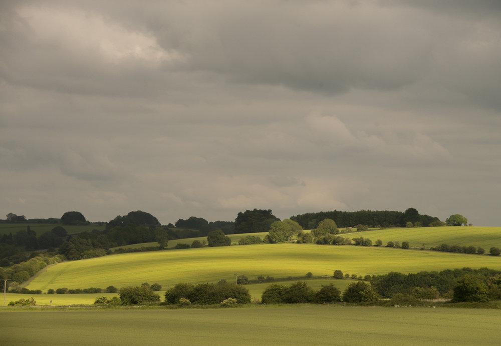 summer-fields-Gloucestershire-Jo-Kearney-photos-landscape-photography-video-landscapes.jpg