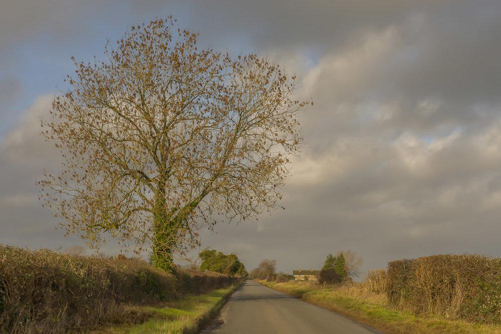 winter-cottage-Gloucestershire-Jo-Kearney-photos-landscape-photography-video-landscapes.jpg