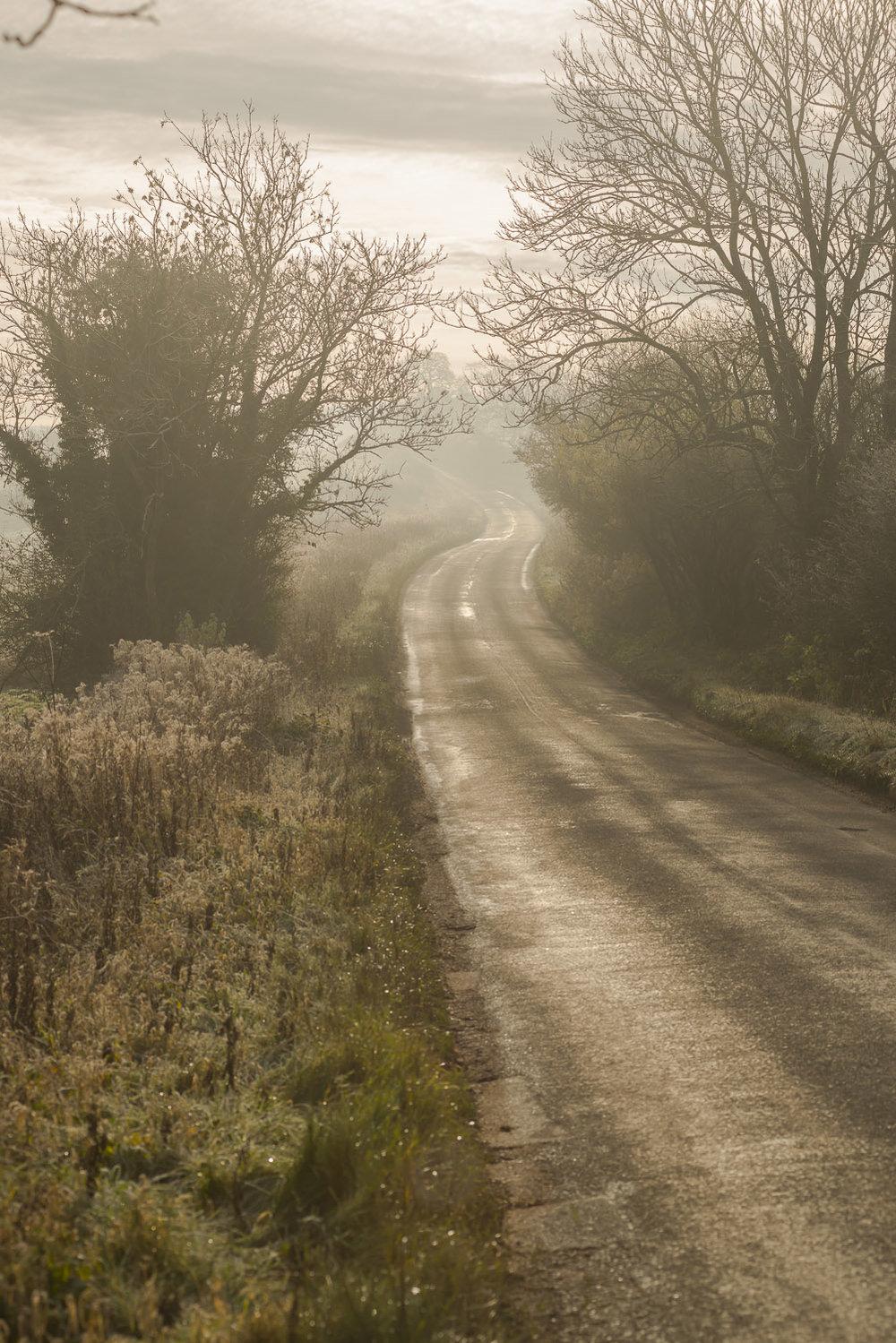 winter-trees-Gloucestershire-Jo-Kearney-photos-landscape-photography-video-landscapes.jpg