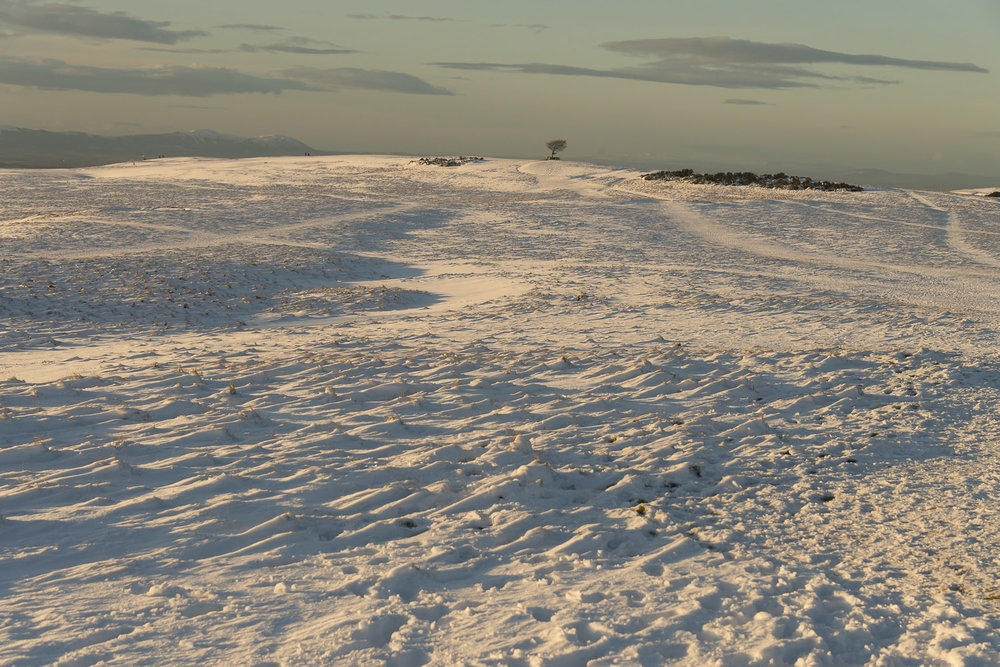 Cleeve-Hill-snow-winter-fields-Gloucestershire-Jo-Kearney-photos-landscape-photography-video-landscapes.jpg