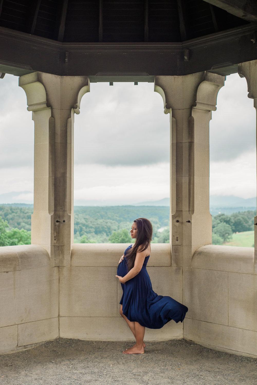 Asheville maternity photographer, Sarah Hooker Photography, Biltmore Estate
