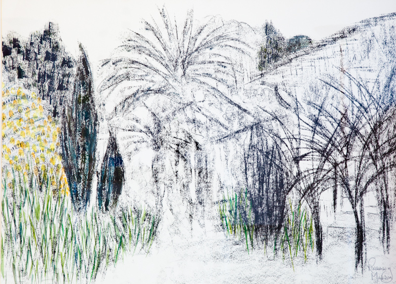 Tuscan Garden 107cm x 87cm Charcoal on Paper NFS