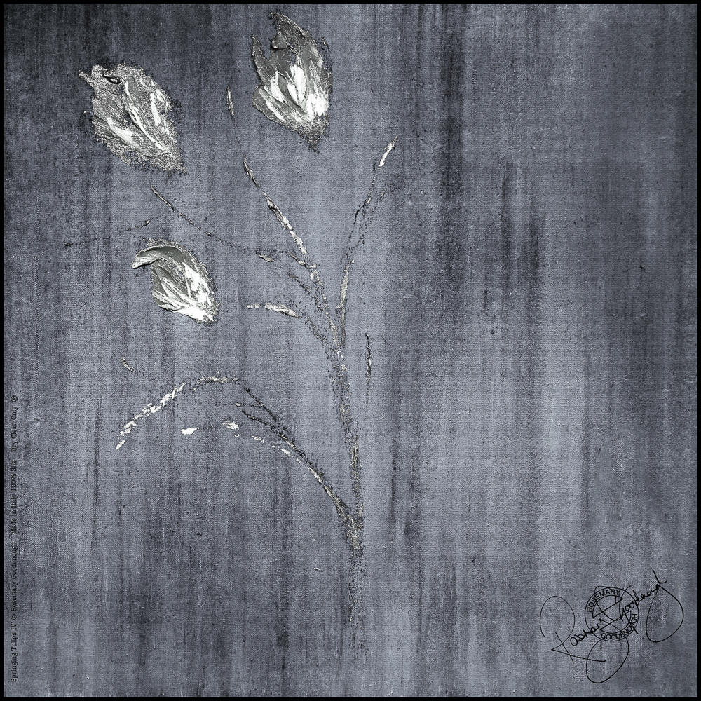 'Springing Tulips IV' (open).jpg