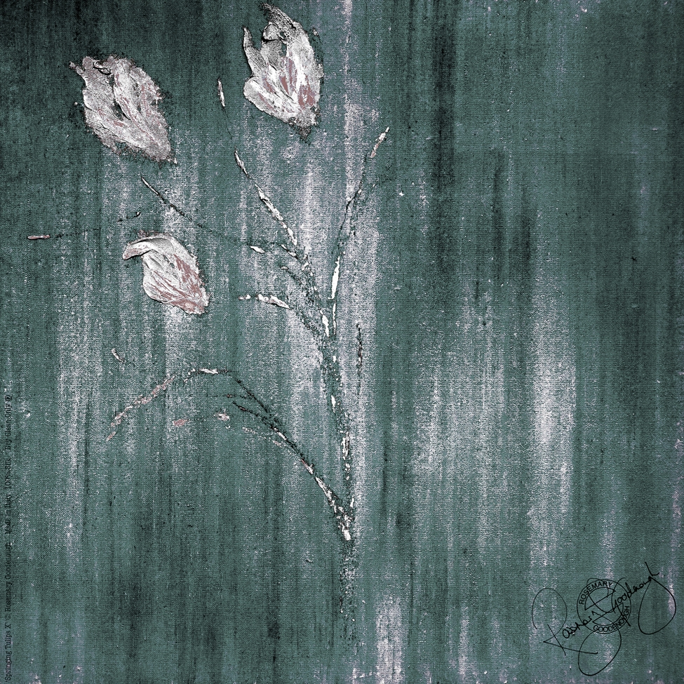 'Springing Tulips X' (open).jpg