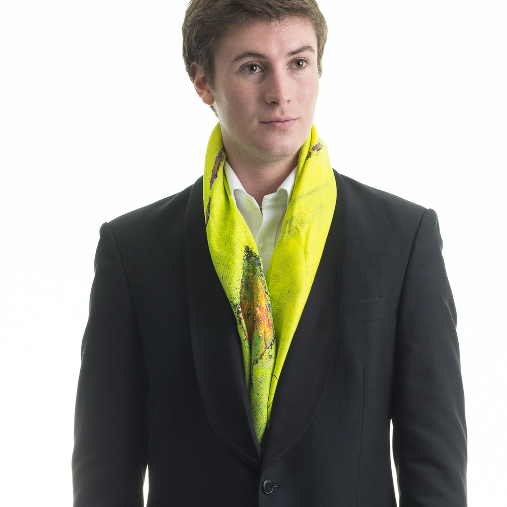 Rosemary Goodenough Man 'Springing Tulips XIX' Scarf.jpg
