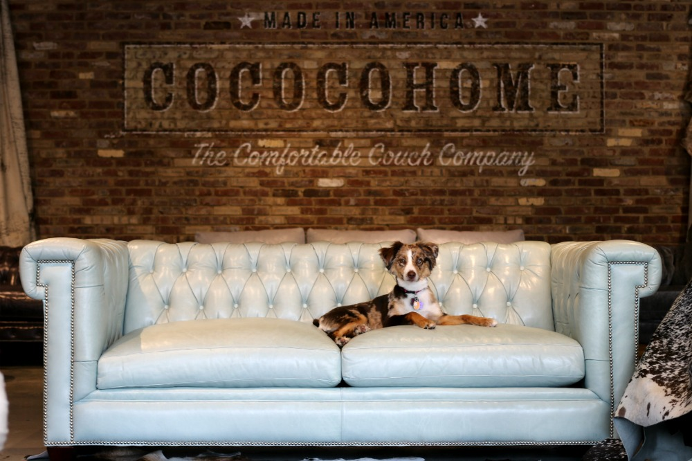 I got to meet shop dog Piper, who belongs to the showroom manager Lilli. Pipershowed me just how great this furniture wears and gave sweet doggy kissesto my kiddos, too.