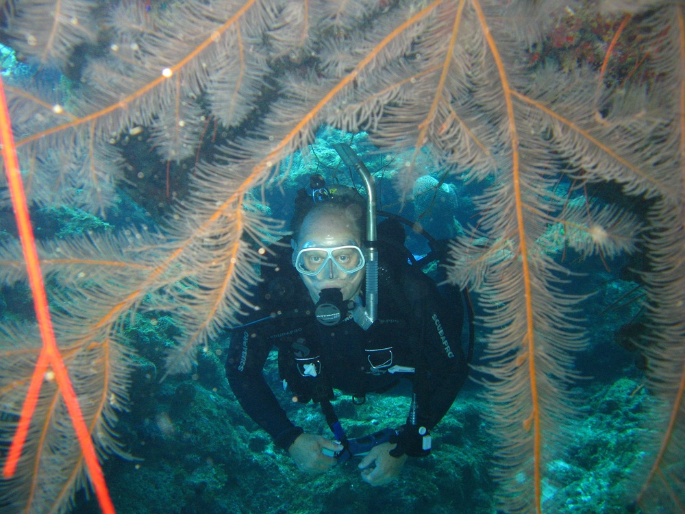 diver barry black coral.JPG