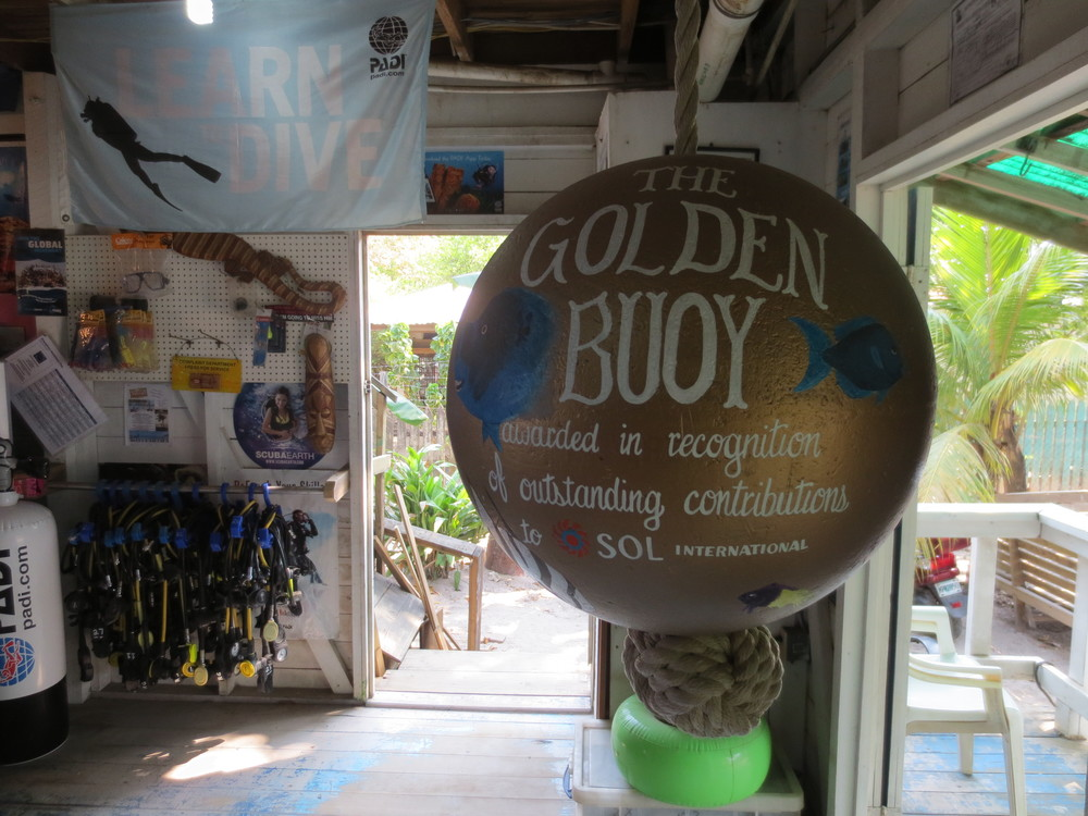 The Golden Buoy Award, hanging in Reef Gliders Dive Center, our friendly competitors who have been keeping it dusted the past year.