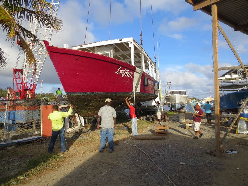 A holiday for Delfin at Martinez Shipyard