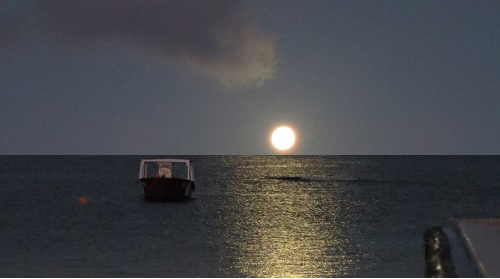 Moonset over Roatan