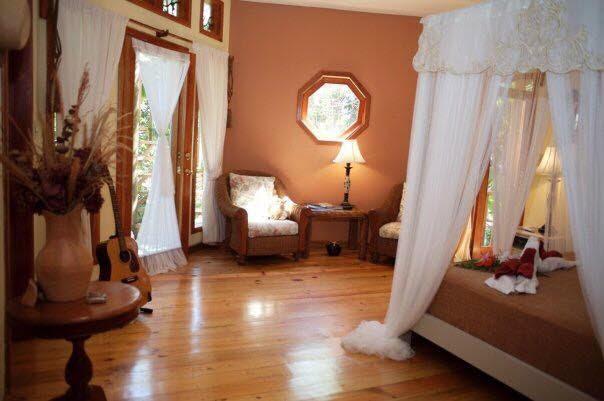 Lily Pond - Room 3