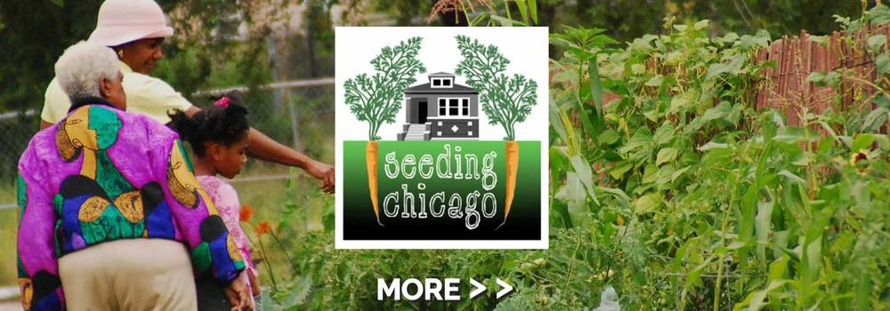 seedchicago-slide1.jpg