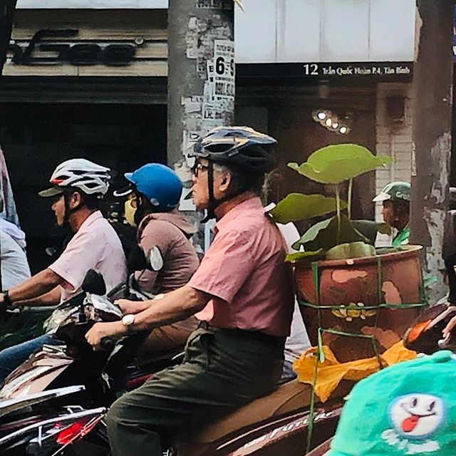 If it brings you joy it will always fit in the back of a scooter.
