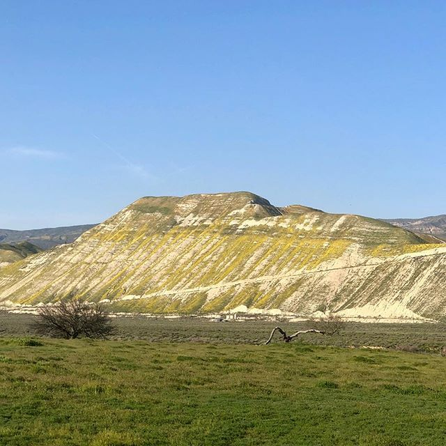 Hwy 166 to Carrizo Plains National Monument... Nature's Art Museum