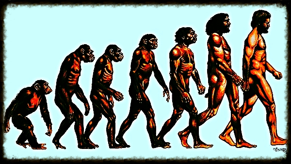 In the article below, American Yoga master Joel Kramer details the common problems of daily practice and offers practical advice to students on how to persevere and enjoy the process of evolution.