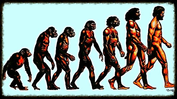 Dans l'article ci-dessous, le maître de Yoga américain Joel Kramer passe en revue les problèmes rencontrés lors d'une pratique quotidienne, et suggère des conseils pratiques pour persévérer et apprécier le processus d'évolution.