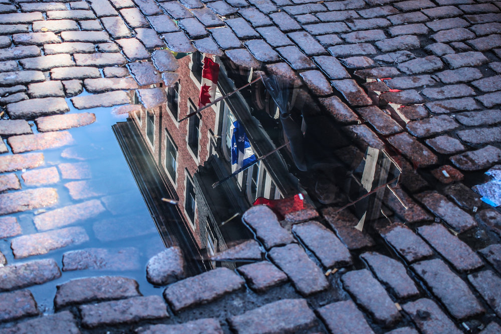 Old Montreal Puddle