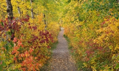 saskatchewan-river-valley-trail-autumn.jpg