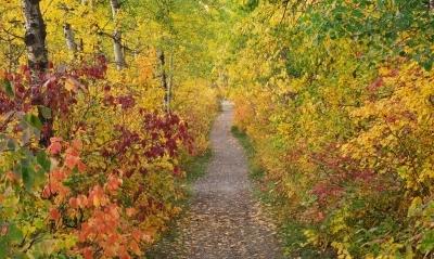 saskatchewan-river-valley-trail-autumn.jpg