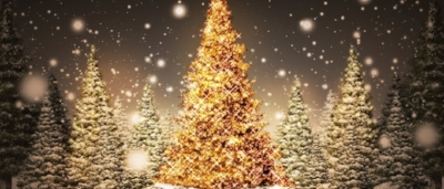 just a reminder that the clinic will have some adjusted hours over the holidays - Christmas Holiday Pictures