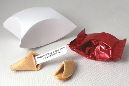 promotional fortune cookies - presentation boxes -  pillow design