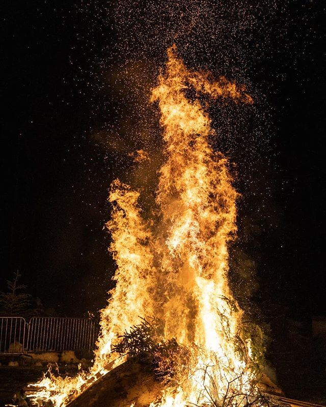Fernie residents sending their Xmas trees up in (huge) flames yesterday. They know how to stoke up a good fire. Ironically, the towns firefighters were throwing the trees on.  #fernie #bc