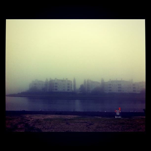 foggy_sunday