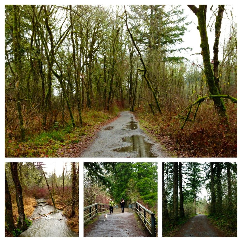 Lacamas Trail