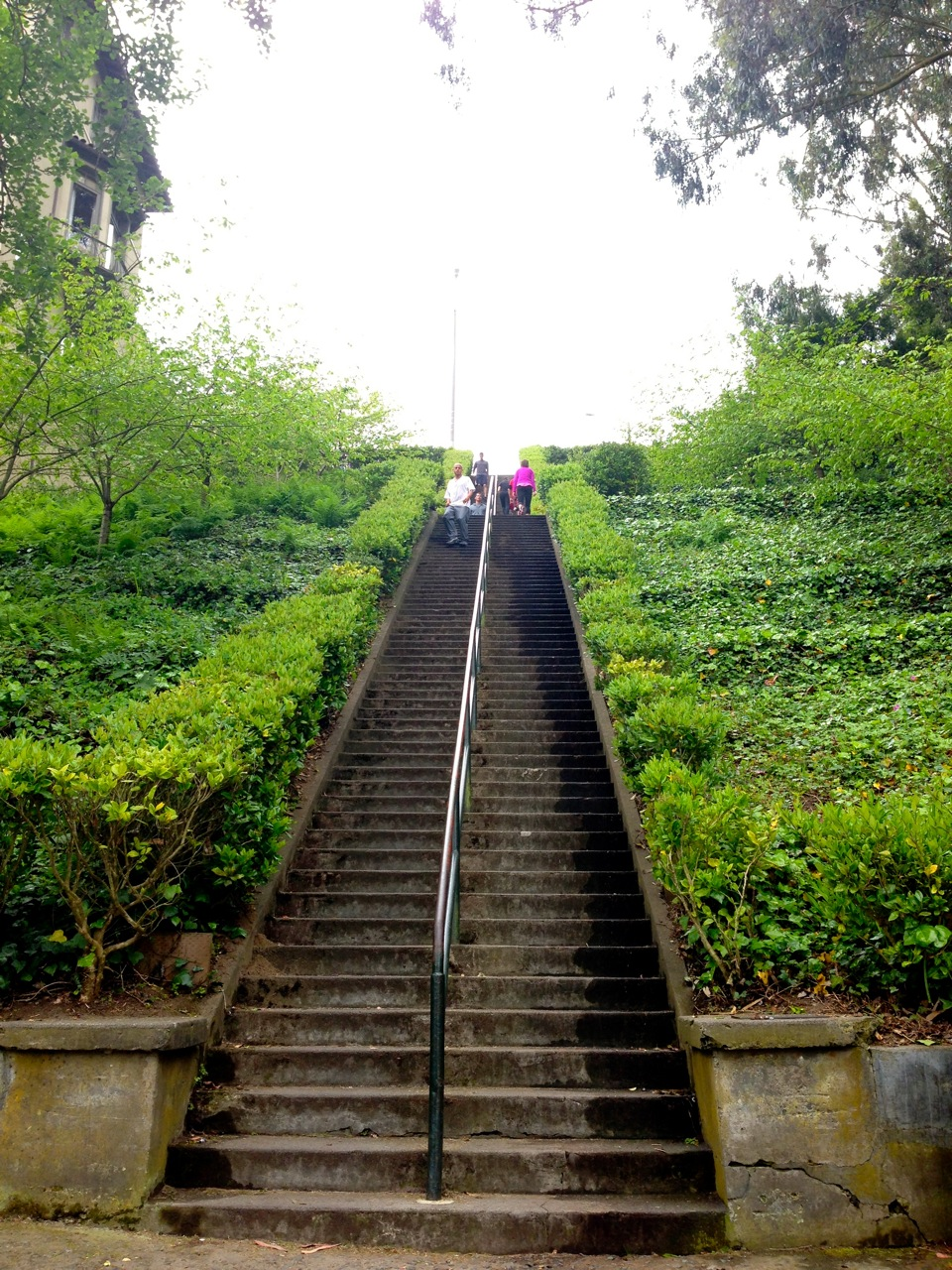 The first section of the Lyon Street Stairs