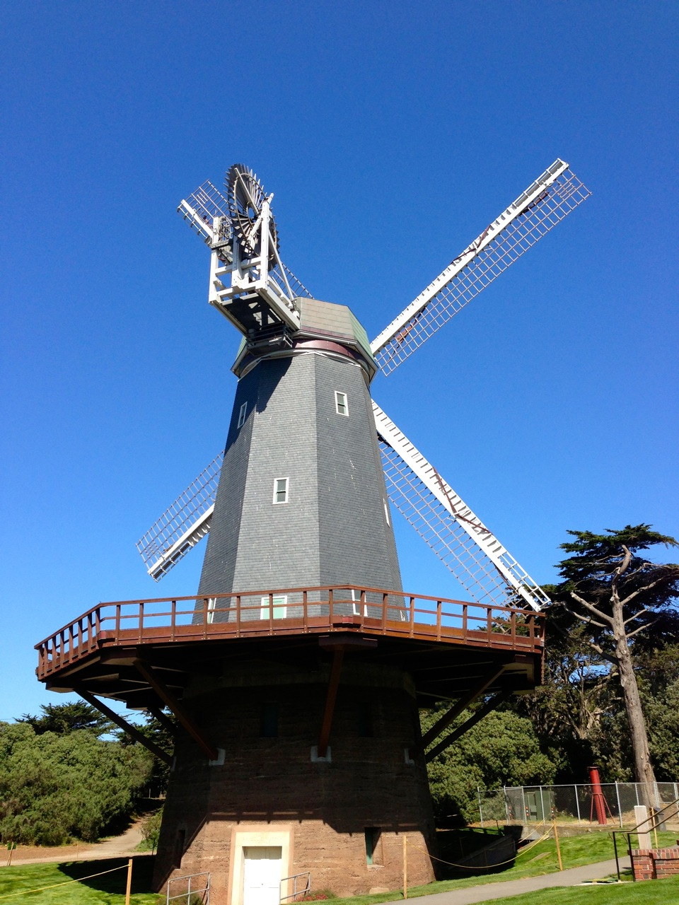 Windmill in Golden Gate Park
