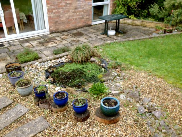 GardenAfter.jpg