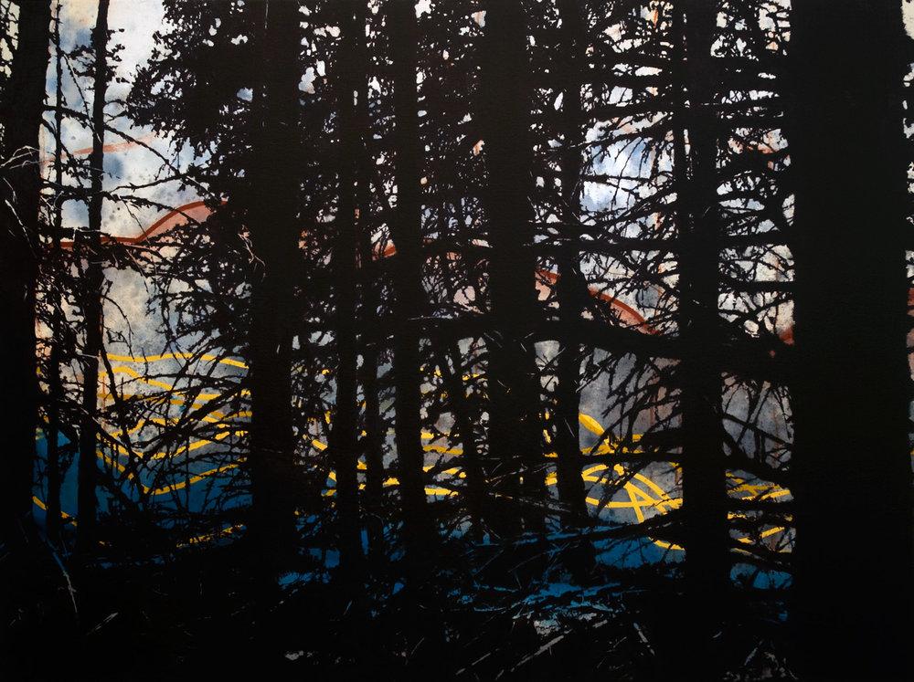 Retour de migration  91 x 122 cm  techniques mixtes sur toile
