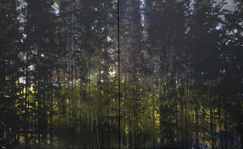 Forêt boréale ( dyptique)  51 x 82 cm  techniques mixtes  2017