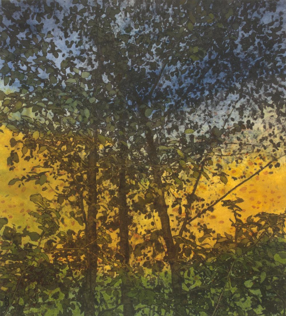 Bruissement no 2  Techniques mixtes sur toile  101 x 91 cm 2018