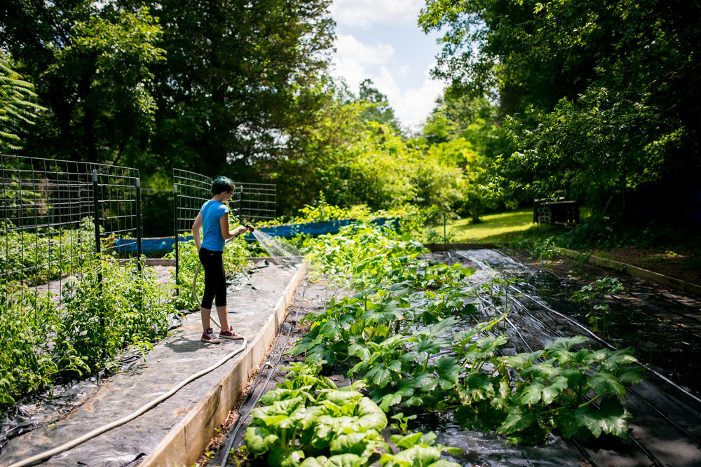 - SLAM partners with The Branch, a local food pantry, to bring volunteers who helped plant and maintain this garden. The Branch provides foods assistance to over 500 families monthly.