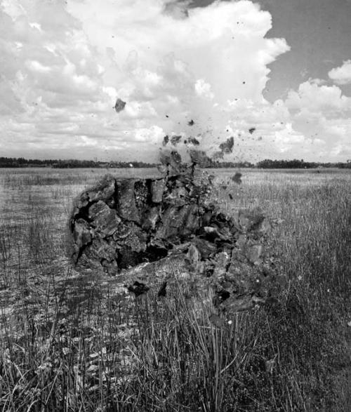 Bessma Khalaf: Meadow, 2014; archival pigment print, 23 in x 20 in.; courtesy of the artist.