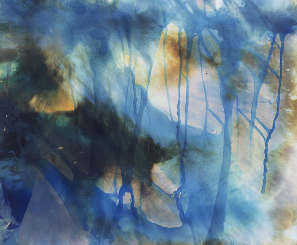 """Reaction #23 Zachary Kolden Unique Chromogenic C-Print 24"""" x 20"""" 2016"""