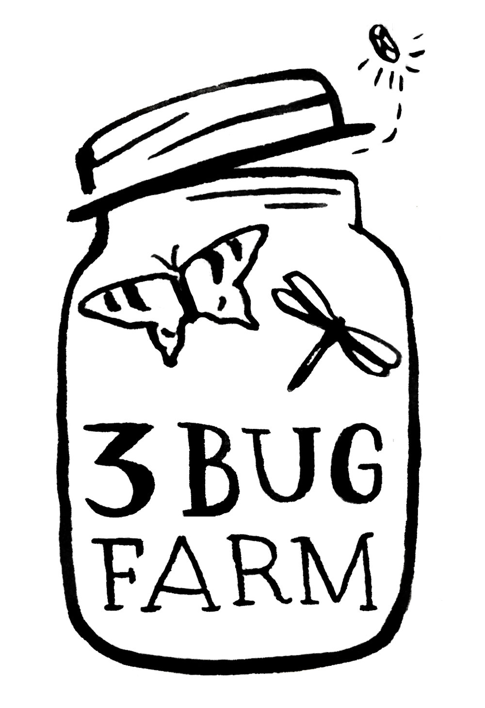 3 Bug Farm logo. Organic family farm in Mid-coast Maine.     Learn more…